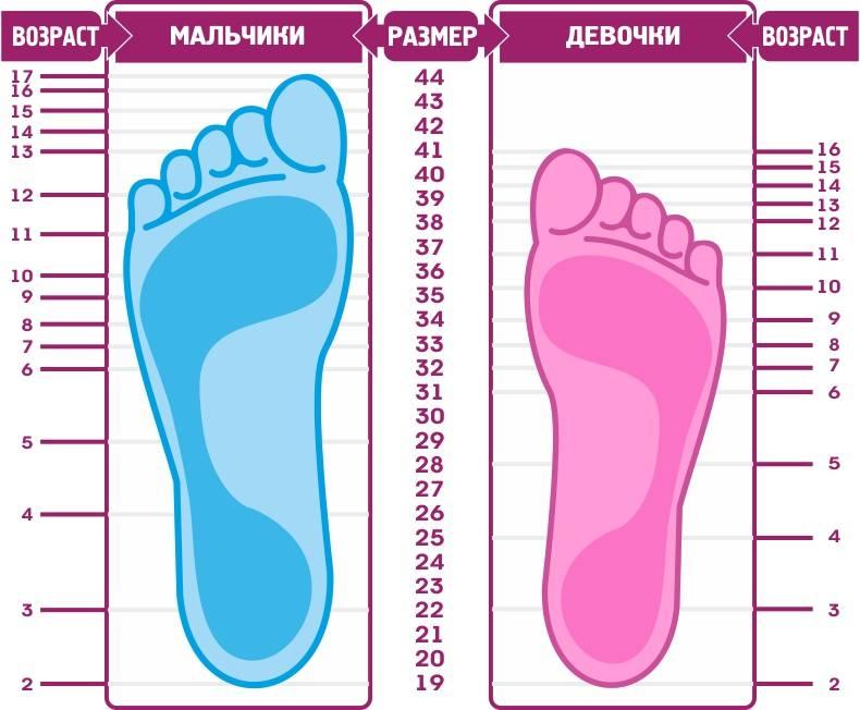 Соотношение возраста и размера ноги у детей