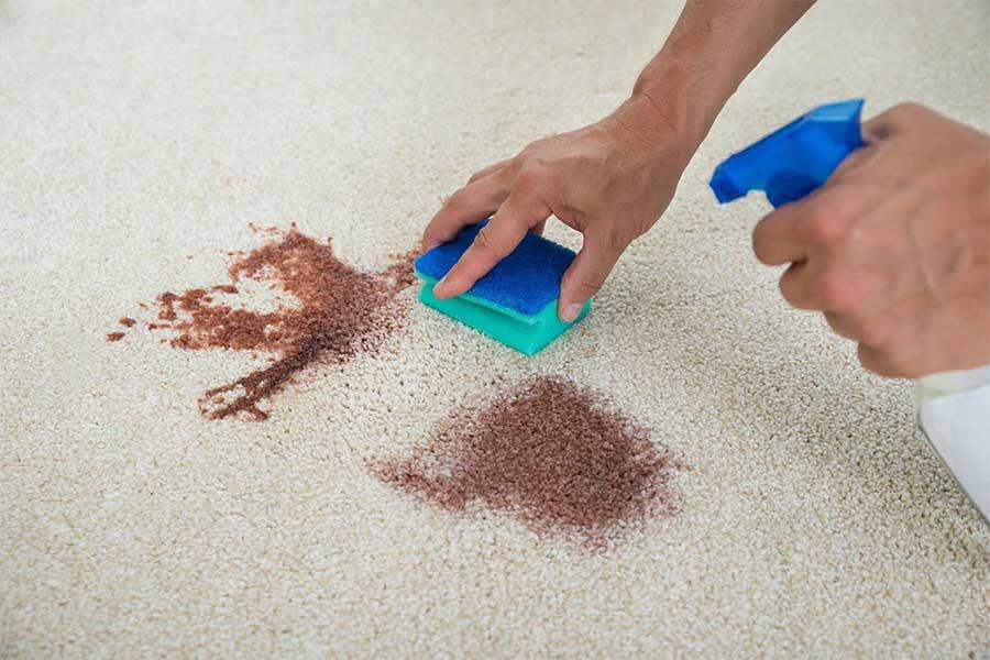 Как убрать запах мочи с ковра: домашние методы