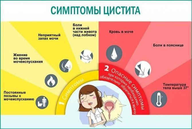 !!! посткоитальный цистит у женщин: лечение и симптомы