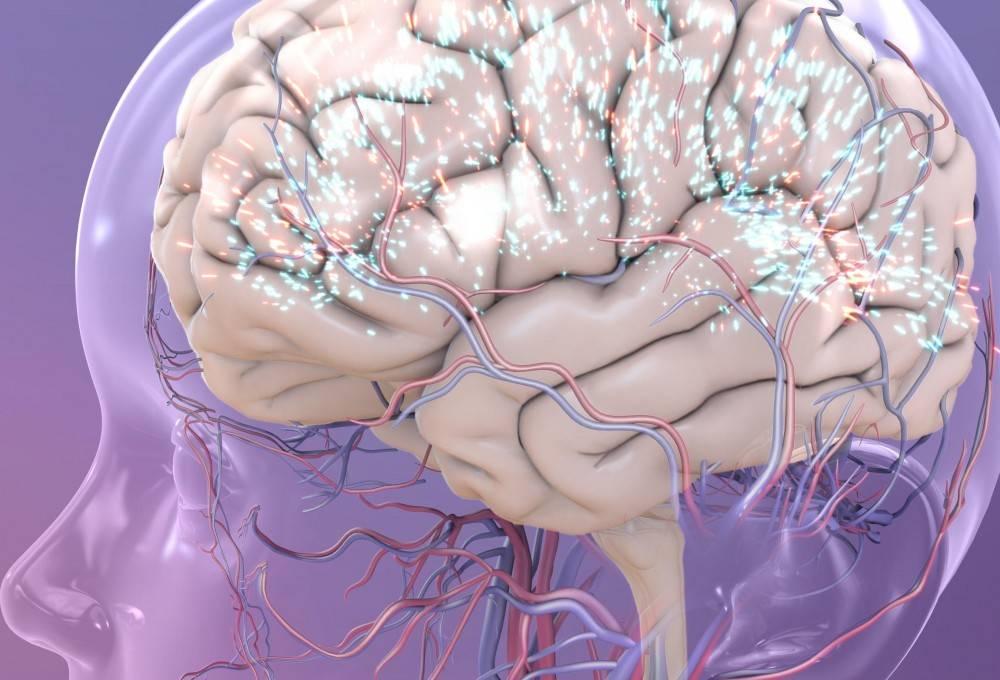 Недоношенный ребенок: особенности нервной системы