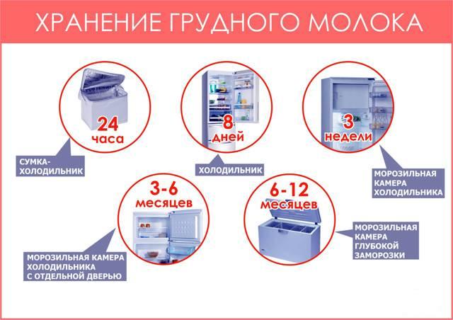 Сколько хранится грудное молоко в холодильнике