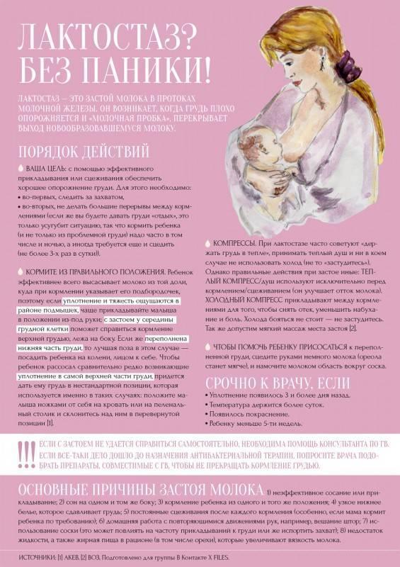 Мастит, его причины, симптомы и лечение