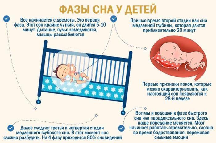 Сколько должен спать ребенок в 6-7 месяцев: сон днем, ночью (таблица)