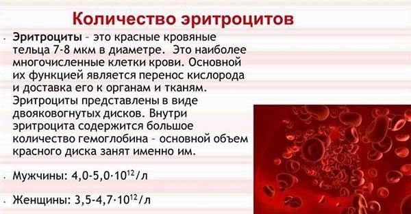 Кровь в моче у ребенка, причины у новорожденного мальчика или девочки