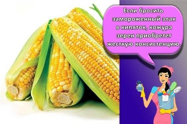 Вареная кукуруза в рационе ребенка