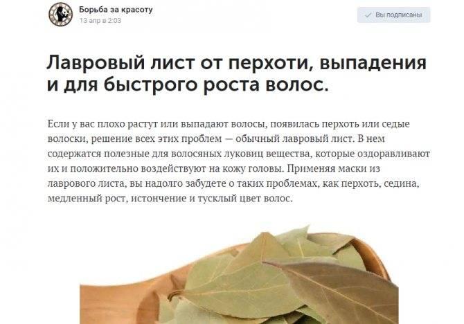 Беременность и зверобой : инструкция по применению | компетентно о здоровье на ilive