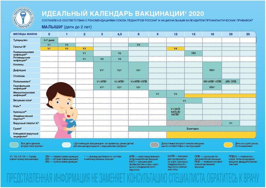 Календарь прививок для детей до 3 лет в России: таблица с графиком и списком вакцинации