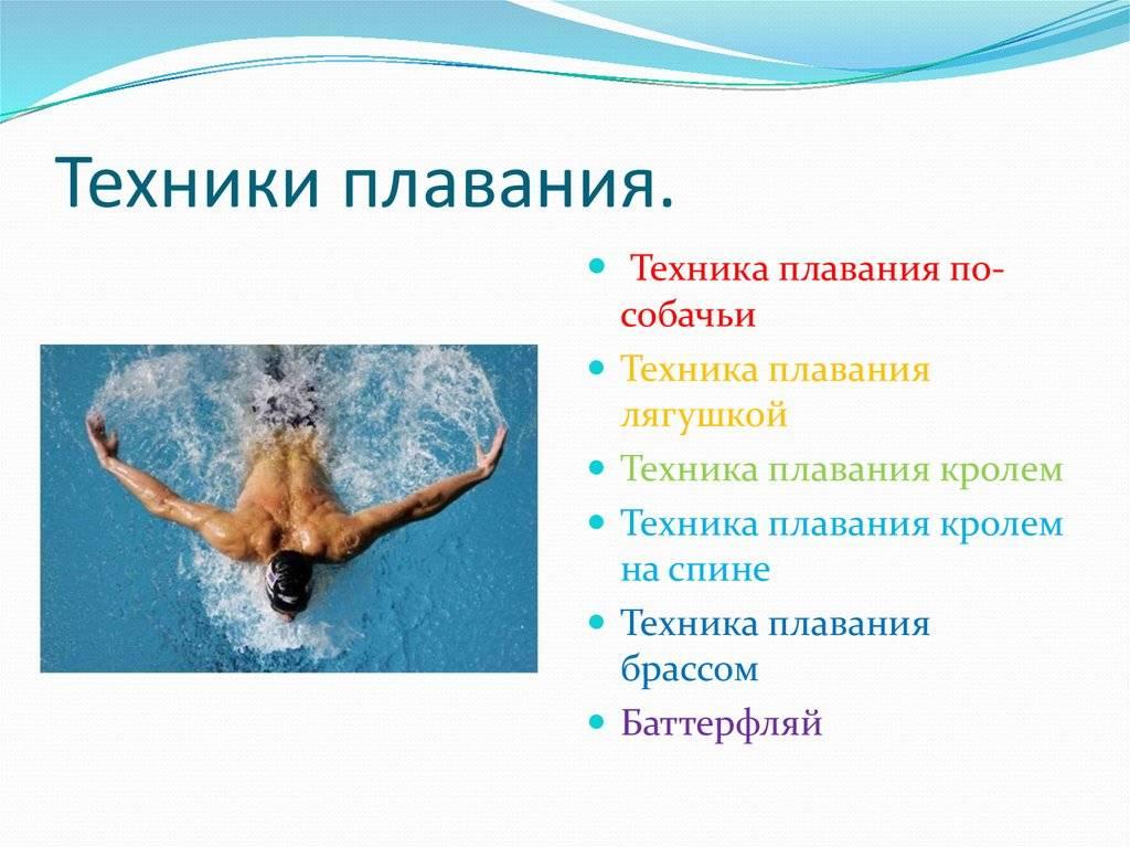 ✅ какие мышцы нужно качать чтобы быстро плавать. бассейн как средство для укрепления мышц - sundaria.su