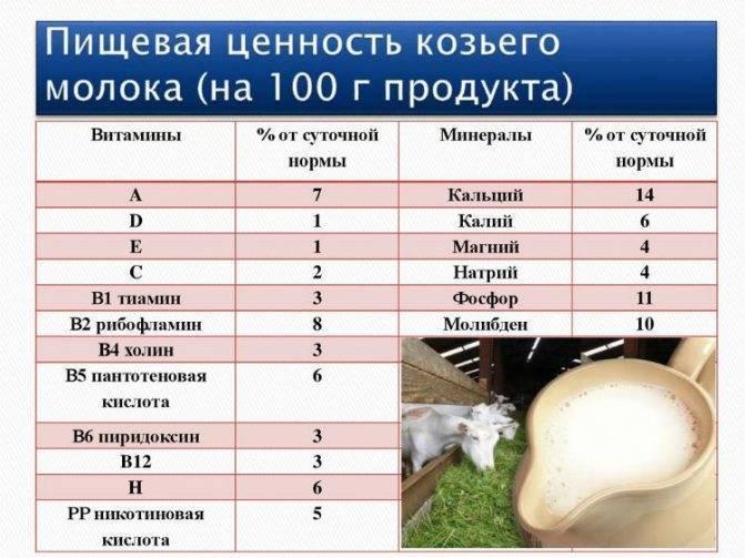 С какого возраста можно давать козье молоко детям: польза и вред - свойства, чем полезно, аллергия у грудничков, можно ли замораживать, кипятить и как хранить