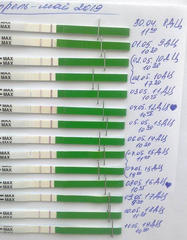 Тест на овуляцию - инструкция, цена, как правильно смотреть результат если слабая полоска