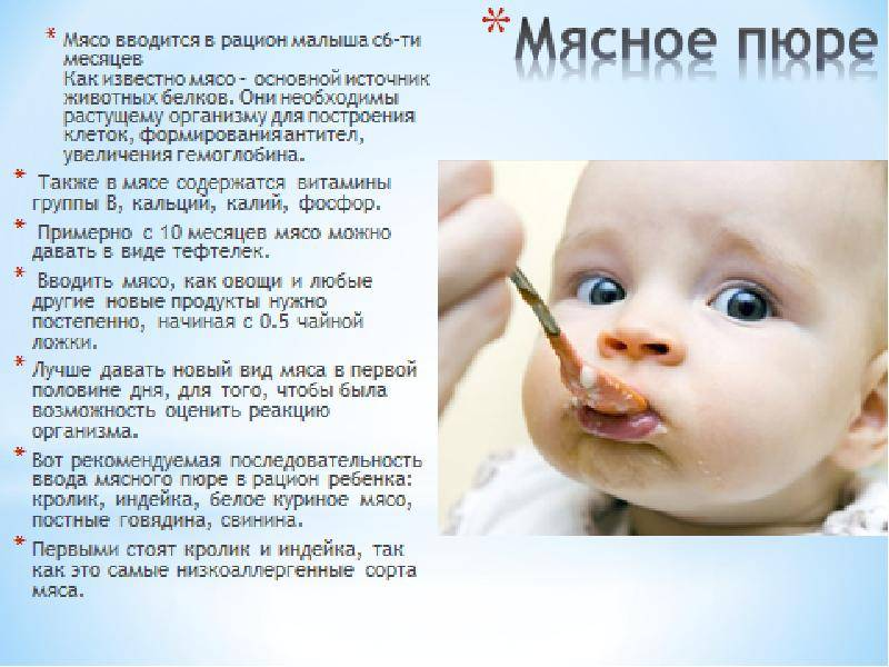 Мясо в прикорме малыша