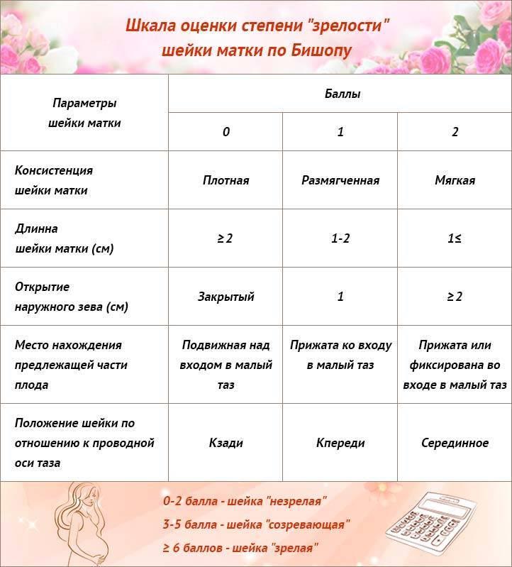 Короткая шейка матки при беременности — медицинский женский центр в москве