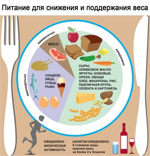 Белковая диета — принципы действия, вред, виды, примерное меню