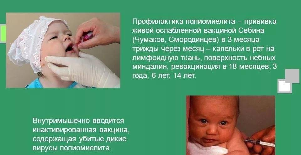 Живая вакцина от полиомиелита и непривитые дети: можно ли заразиться от привитого ребенка, заразен ли он ~ факультетские клиники иркутского государственного медицинского университета