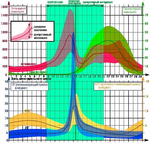 Анализ крови на гормоны, норма и расшифровка результатов показателей   статья на сайте медицинского центра «вымпел-медцентр»