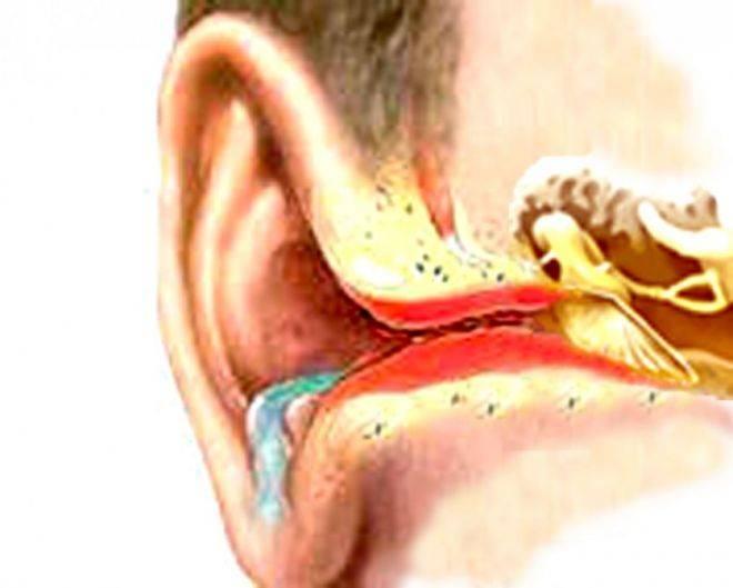 Почему у грудничка пахнет из ушка. запах из ушей у ребенка