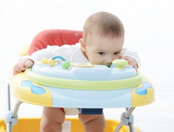 Учимся ходить – когда можно сажать ребенка в ходунки мальчика