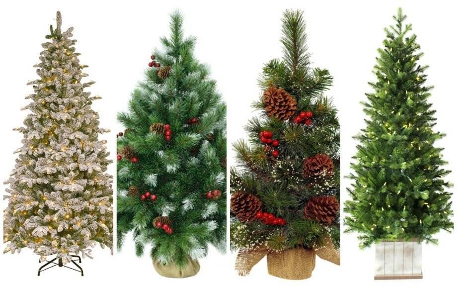 Как выбрать елку на новый год