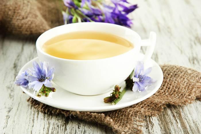 Цикорий при грудном вскармливании: можно ли пить кормящей маме
