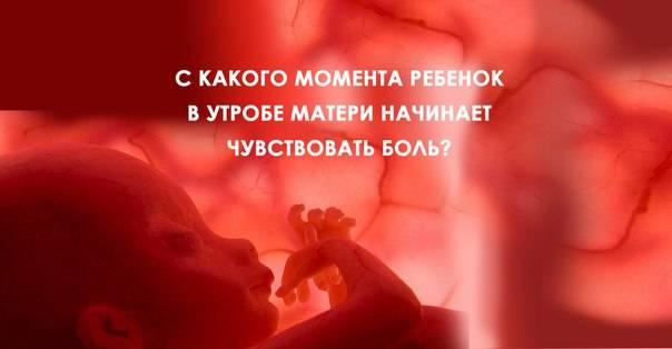 Что происходит с мамой и малышом во время 36 недели беременности, опасны ли роды на этом сроке?