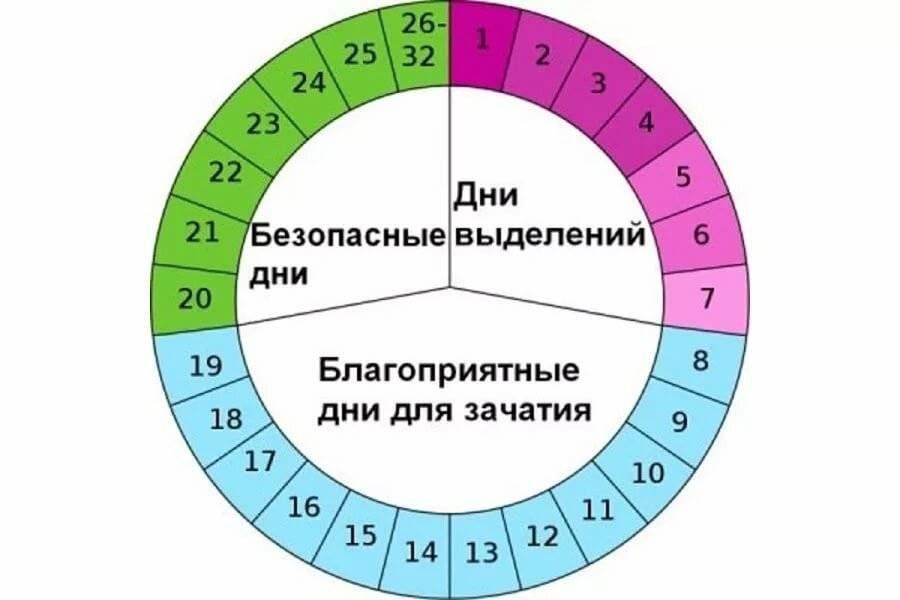 Калькулятор для расчёта овуляции и зачатия ребенка