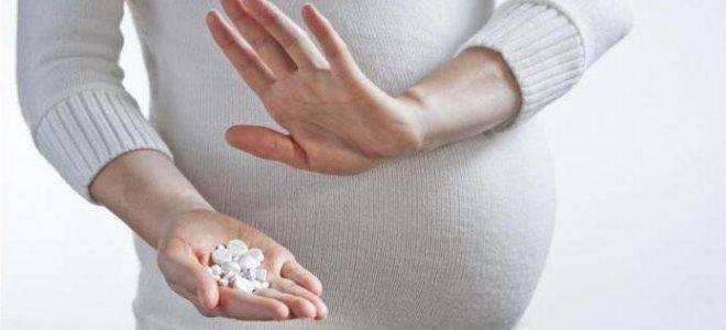 Душица при беременности: можно ли на ранних сроках