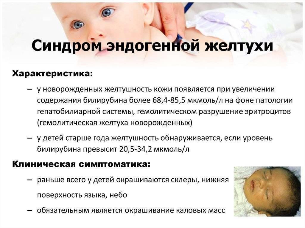 Причины возникновения шумов в сердце у новорожденного ребенка ~ факультетские клиники иркутского государственного медицинского университета