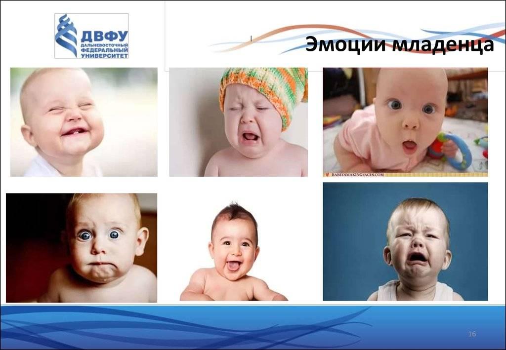 Почему ребенок плачет?   компетентно о здоровье на ilive