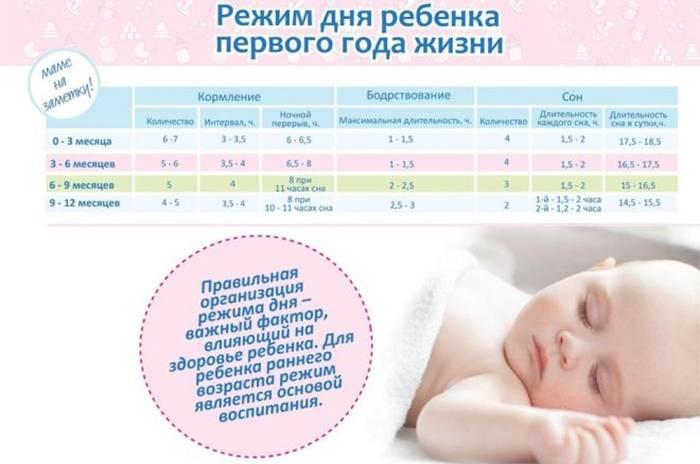Режим сна грудничка по месяцам