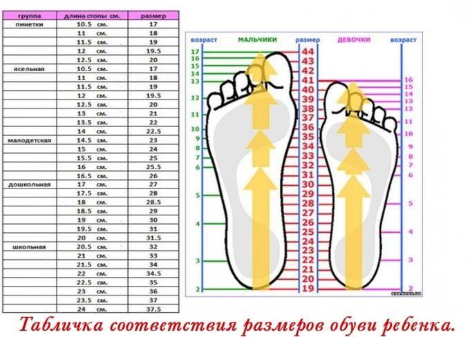 Как правильно подобрать обувь ребенку (таблица)