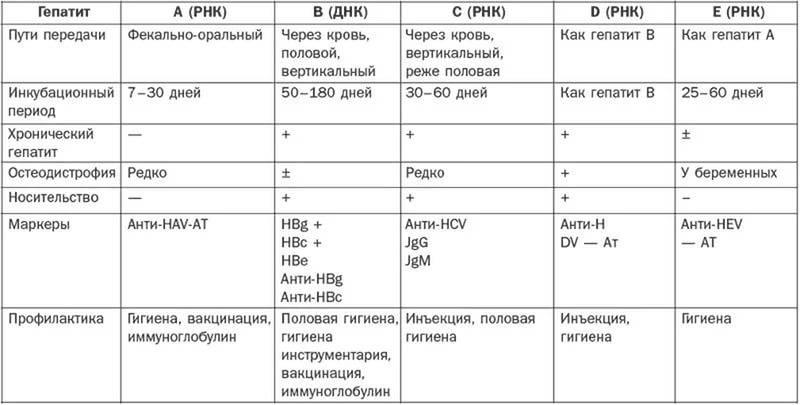 Кандидозный стоматит: у детей, симптомы, лечение, фото, у взрослых, профилактика