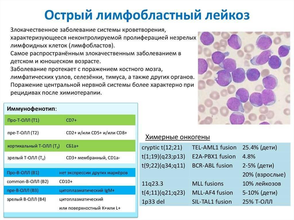 Онкологические заболевания крови