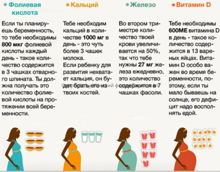 Развитие ребенка в утробе матери