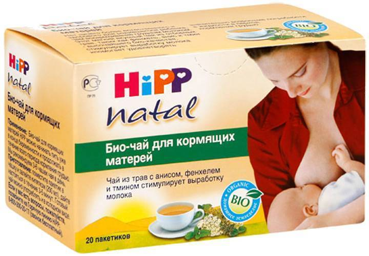 Мята при грудном вскармливании, в том числе перечная: можно ли маме пить чай при гв, также употреблять его в первый месяц лактации, как это влияет на новорожденного?