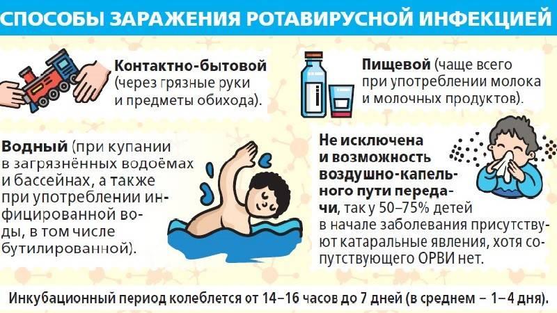 Норовирус (норовирусная инфекция): симптомы и лечение – напоправку – напоправку