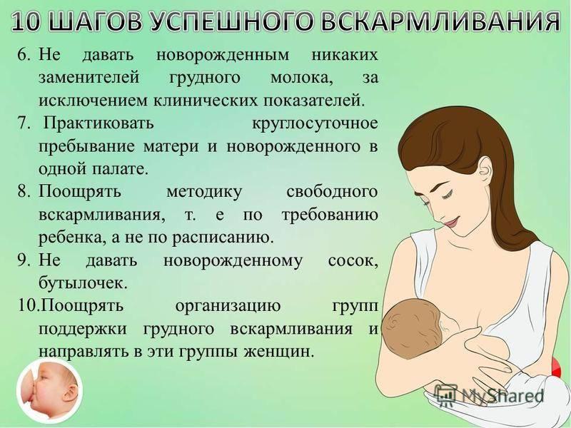 Режим дня новорожденного в первый месяц, по месяцам, комаровский