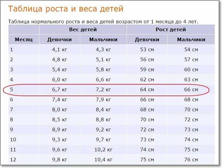 Вес ребенка в 5 месяцев