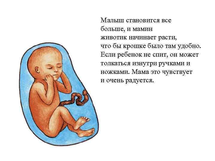 Чувствует ли ребенок боль мамы когда еще в животе - медицинский портал: все о здоровье человека, клиники, болезни, врачи - medportal.md