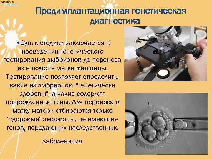 Генетический анализ эмбриона при эко • +мама