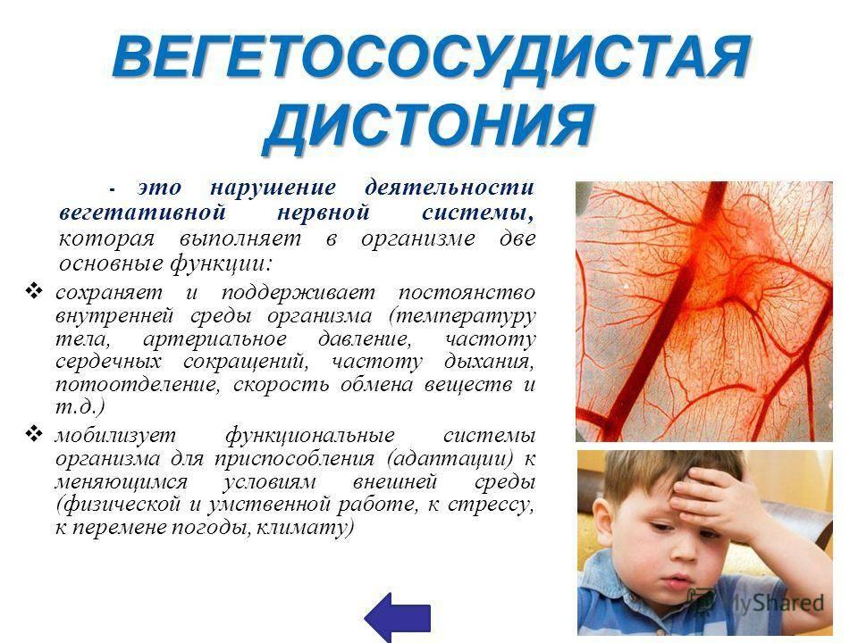 Вегетососудистая дистония. лечение всд в киеве