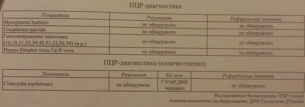 Понятие и особенности hla-типирования супругов 1 и 2 класса, расшифровка результатов анализов