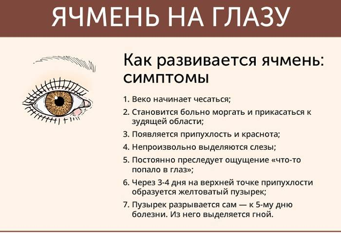 Ячмень на веке глаза: причины появления, лечение, вскрытие ячменя.