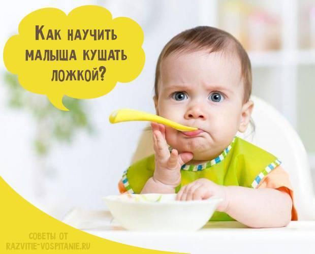 Ребенок после года: чем его накормить и как научить есть самостоятельно. как научить ребенка самому есть ложкой