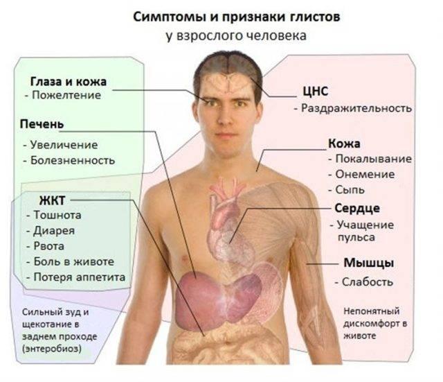 Нервная одышка, возникающая на нервной почве: как называют еще, симптомы, лечение, берут ли в армию с дыхательным неврозом