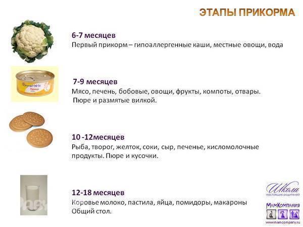 Картофельное пюре для грудничка: когда вводить картофель в прикорм