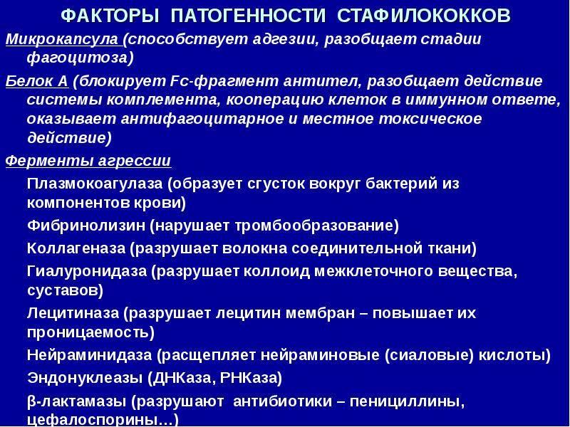 Стафилококк - стафилококковые инфекции | университетская клиника
