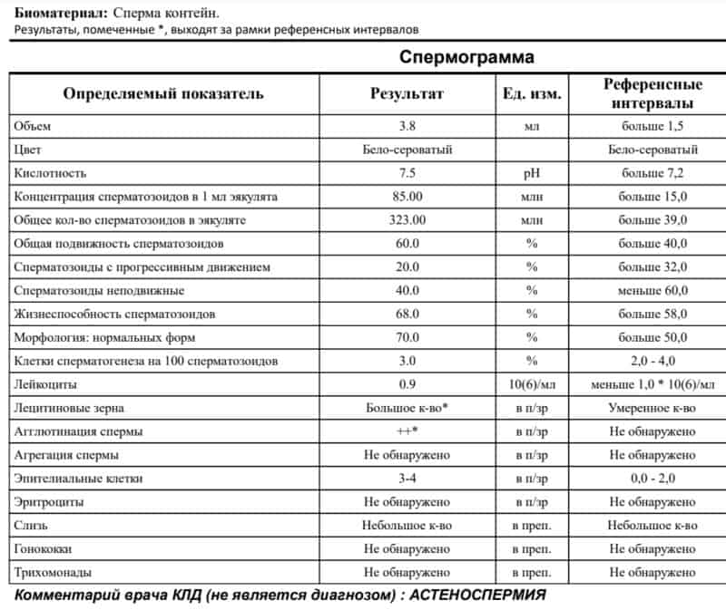 Количество лецитиновых зерен в простате: норма и патология