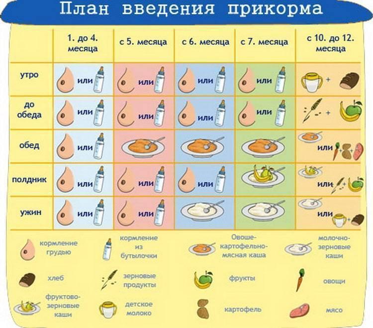 Горох прикорм - энциклопедия детское питание