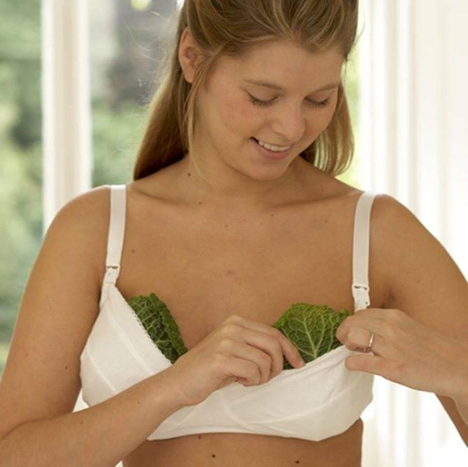 Лечение лактостаза | компетентно о здоровье на ilive
