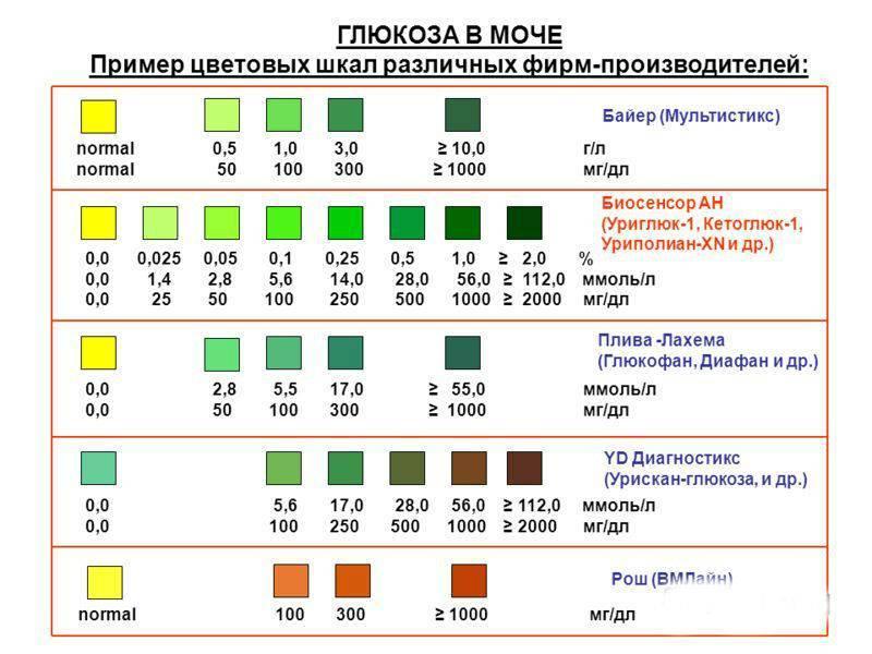 Кетоновые тела в моче и кетонурия (кетоны в моче) - норма, симптомы, лечение * клиника диана в санкт-петербурге